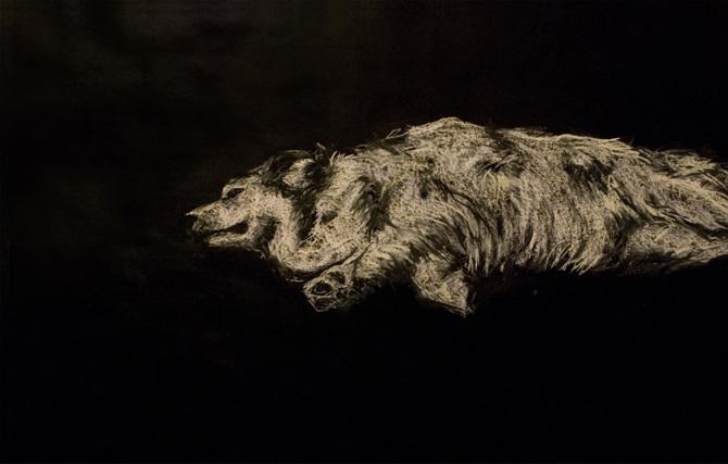 mon chien est mort corpus 2012 2013 karina pawlikowski. Black Bedroom Furniture Sets. Home Design Ideas